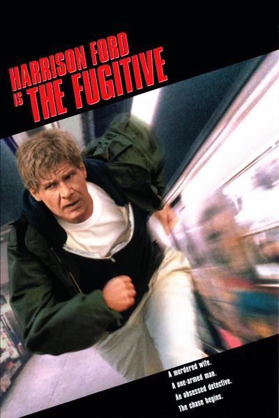 el fugitivo 1993